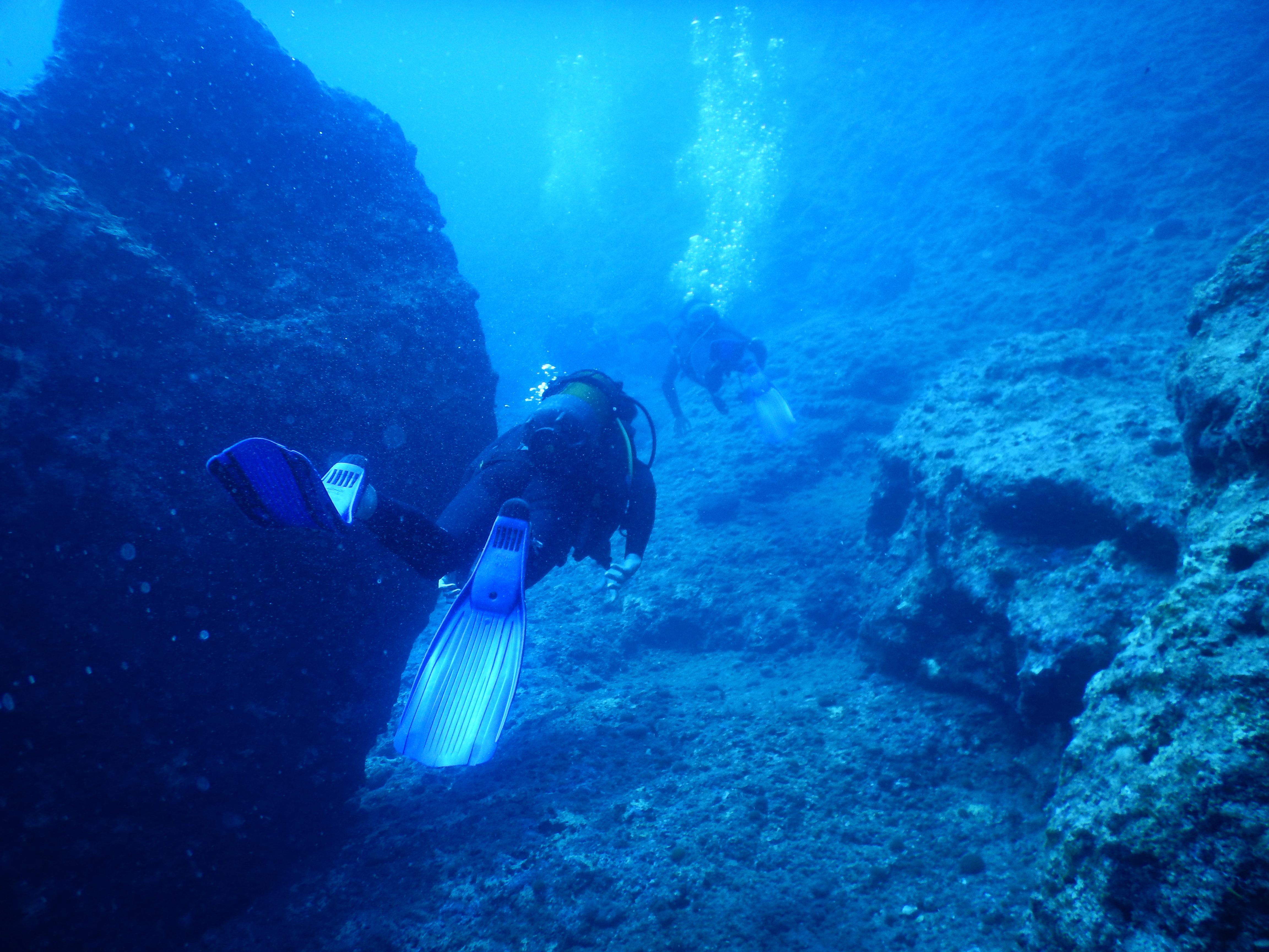 Grottor och Mammut på Kreta