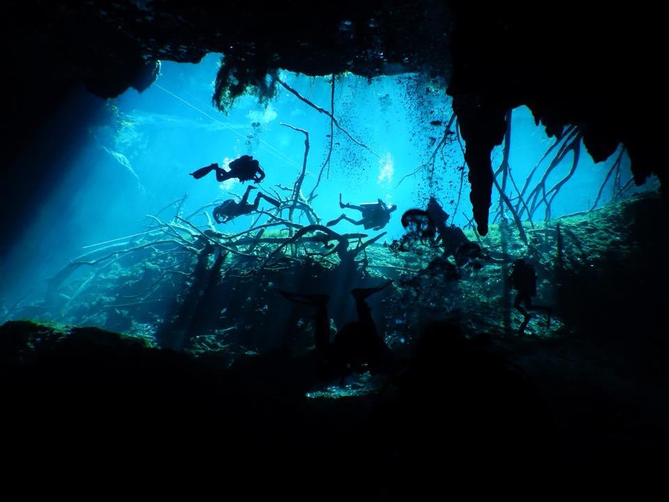 Cenotedyk i Mexiko